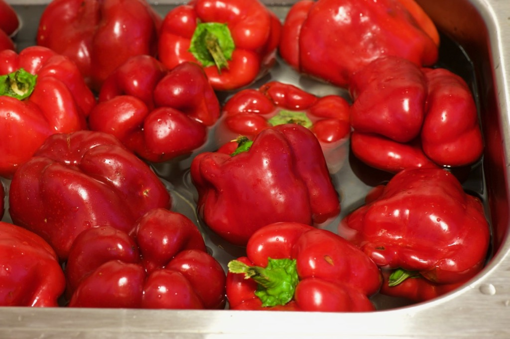 wash peppers