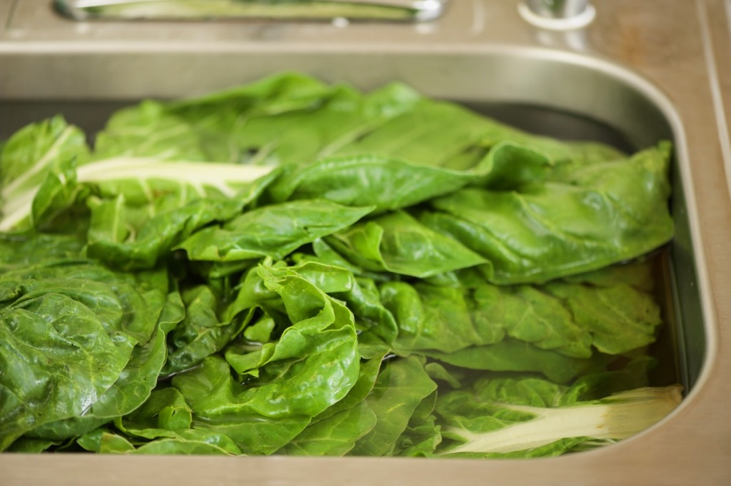 wash Swiss chard
